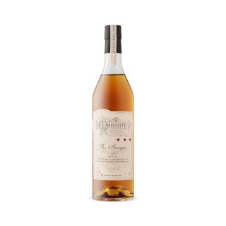 CHATEAU DE BORDENEUVE 3* ARMAGNAC
