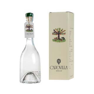 CAPOVILLA DISTILLATO DI PERE WILLIAMS BRANDY